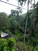 Bali110