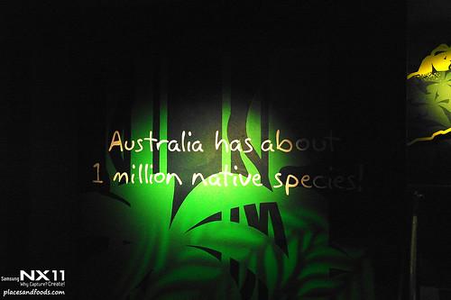 WILD LIFE Sydney Zoo entrance