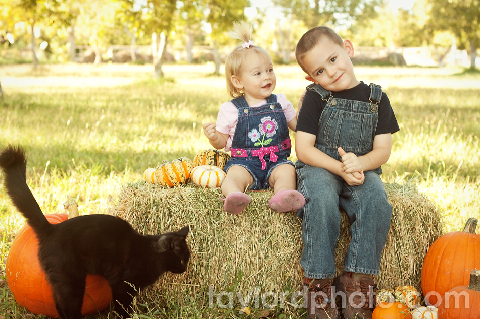 fall_mini_session_las_cruces_3
