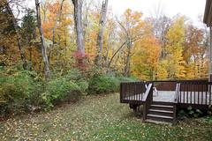 Private back yard in Flatrock Ridge