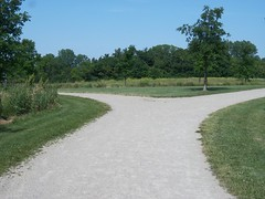 asphalt, trail, land lot, soil, grass, tree, road, driveway, lawn, road surface, walkway,