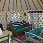 pinecone yurt1