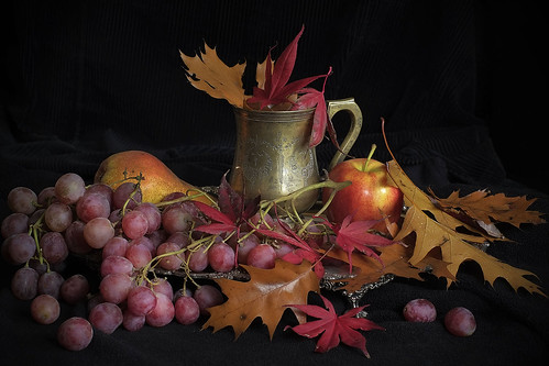 autumn colours - a still life study with X-Pro1