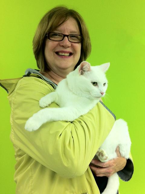 Cat Adoption Seatte