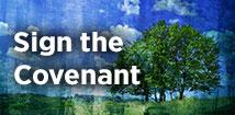 Renovaré-214x105-WebBanners-Covenant-d4