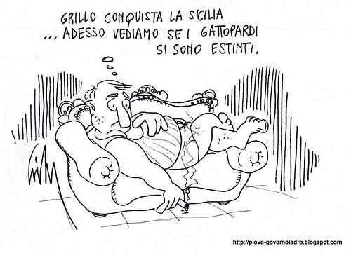 I Gattopardi by Livio Bonino