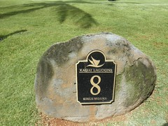Kauai Lagoon Golf Club 336b