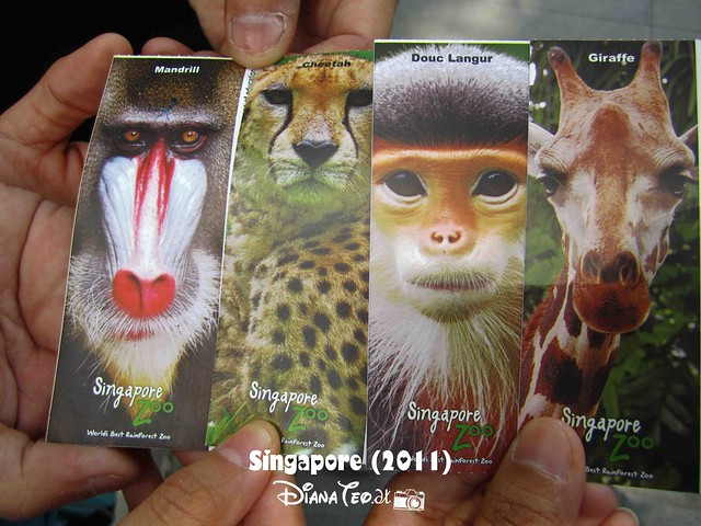 Day 3 Singapore - Zoo Singapore 01