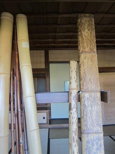 Hakone Japanese Gardens, Saratoga, CA, bamboo IMG_2390