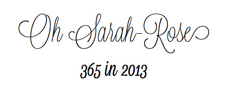 365 in 2013