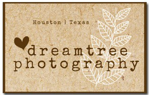 DreamTree_Logo