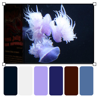 crown-jellies_palette