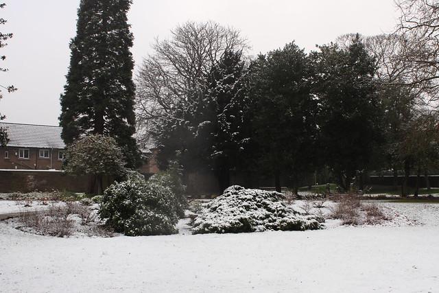 Robert's Park
