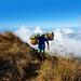 Rinjani Mountain porter