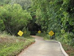 Kauai Lagoon Golf Club 170
