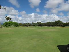 Kauai Lagoon Golf Club 1195
