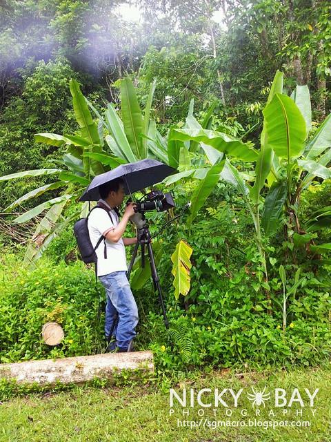 Shooting in the Rain - nicky_rain_IMG_20120520_WA0010