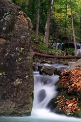 Lower Tews Falls - Lower Logie's Creek
