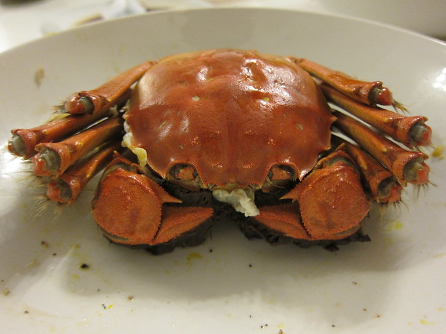 Hong Kong Hairy Crabs