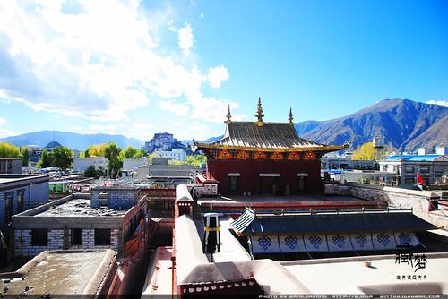 8102232713 0c73daa661 藏梦●追寻诺亚方舟之旅:神秘藏传佛教   王佳冬个人博客