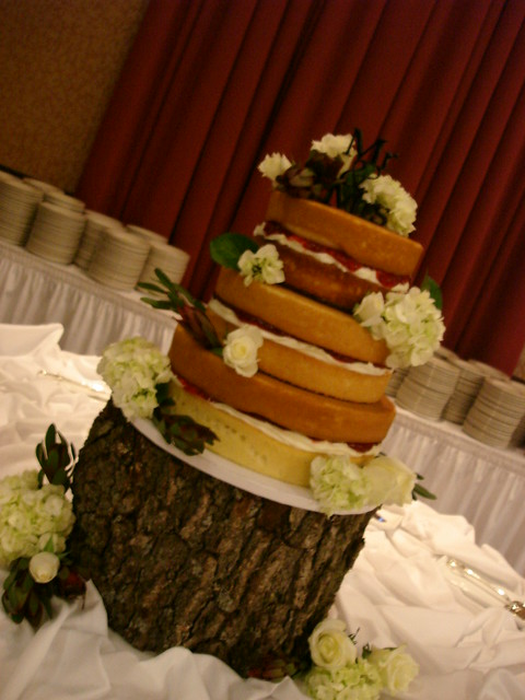 no frosting wedding cake wedding cake with no icing flickr photo 17906