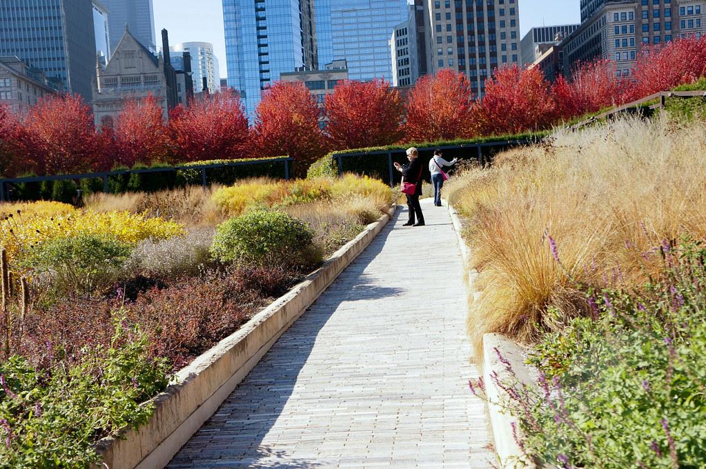 Millennium Park The Lurie Garden Landscape Voice