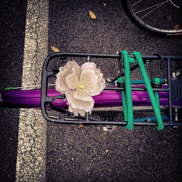 Bicycle back rack in #zurich #cyclechic #bike