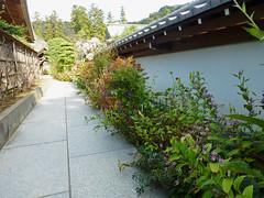 Sat, 27/10/2012 - 13:41 - 円覚寺 - 松嶺院