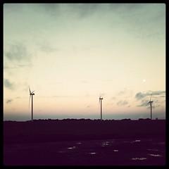 Éoliennes et lune