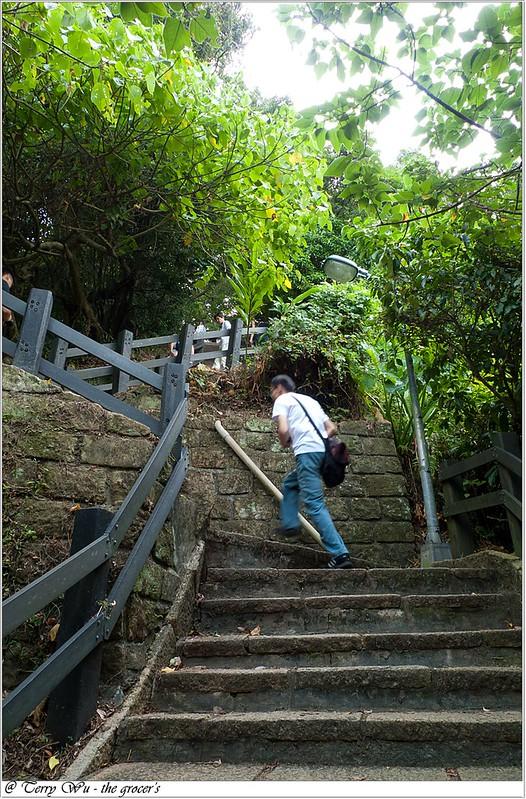 象山芭樂步道-8