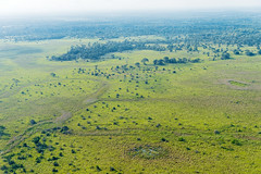 The Pantanal seen from the sky I