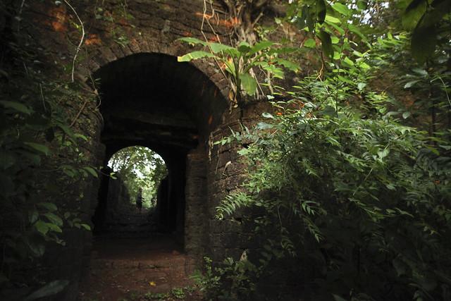 Reddy Fort