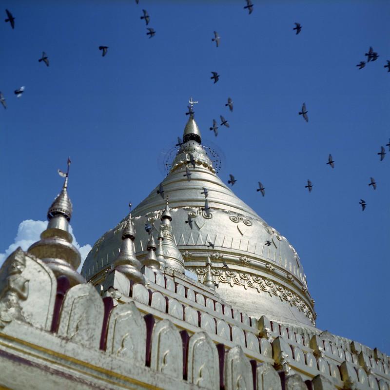 Bagan - Shwezegon Pagoda