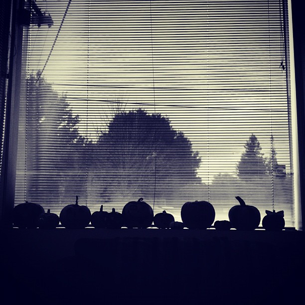 The @poshmark pumpkin patch #halloween #pumpkin #silhouette #blackandwhite #spooky #pumpkins #inthewindow #instadaily