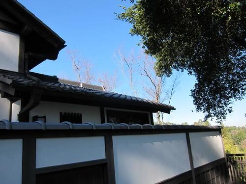 Hakone Japanese Gardens, Saratoga, CA IMG_2321