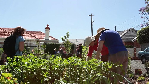 Living Mosman: Community Gardening