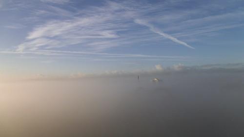 Mist Over Sefton Park. by feelinglistless