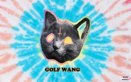 Golf Wang Cat Wallpaper Odd future tron cat tie dye