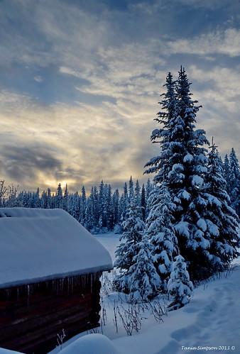 cabin trees snow sky winter landscape ice cold beaverlakemountainresort winfield okanagan okanaganvalley bc britishcolumbia canada taniasimpson photographer photography photograph photo image copyrightimage nikon nikond7000
