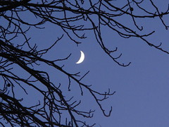 Nokså ny måne