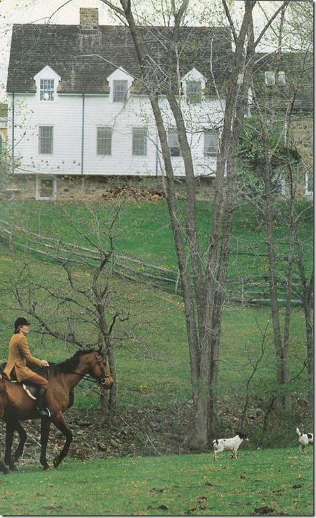 horse+rider in field