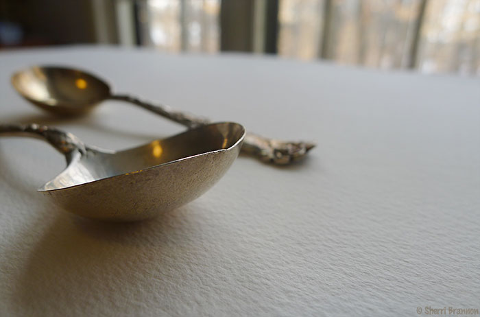 two spoons study