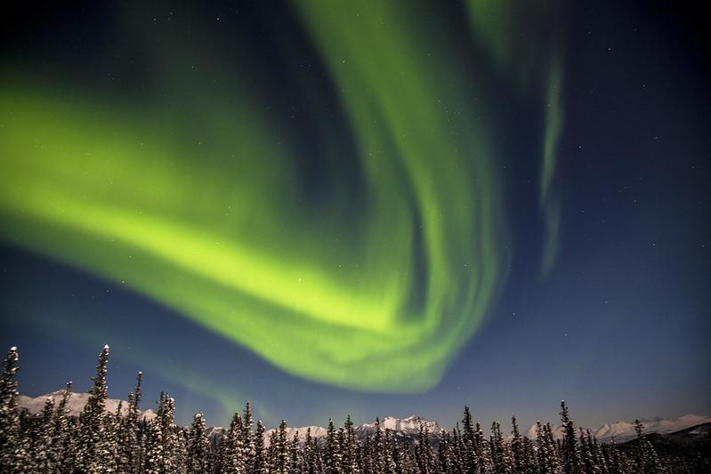 Northern Lights Over Denali National Park