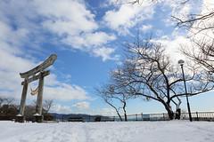 丘の上の積雪