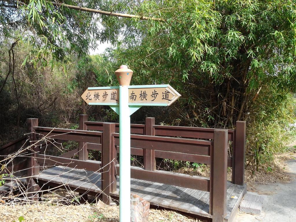 高雄彌陀漯底山自然公園 (17)