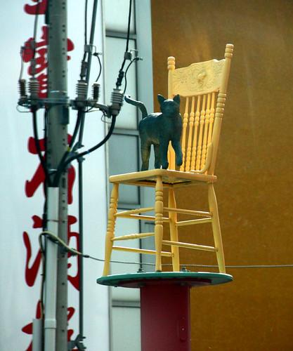 Toronto - Cat on a Chair - Chinatown/Kensington Market