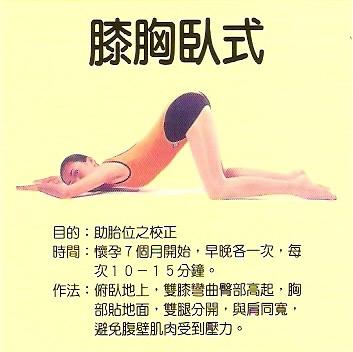 「膝胸臥式」的圖片搜尋結果