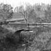 Small photo of Calamus Creek Bridge