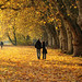 Romantic Autumn Walk by Habub3