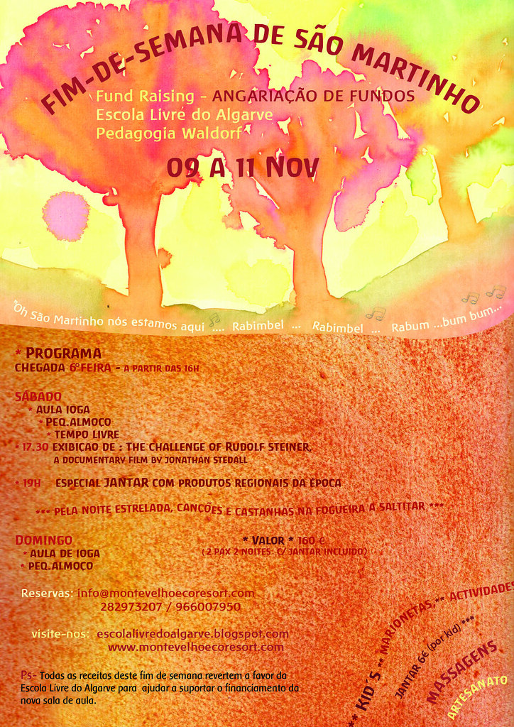 flyer smartinhonov12